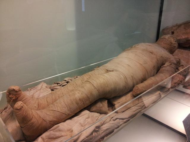 egyptian-museum-630297_1920